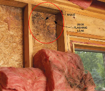 Mold & Mildew prevalent in a traditionally built wood home